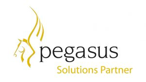 Pegasus logo IT services examples